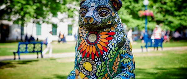 The Big Sleuth Auction Hot Contenders Revealed!